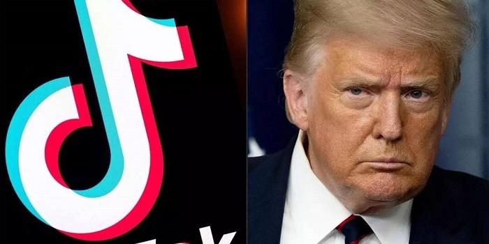 Oracle sería el nuevo dueño de TikTok en Estados Unidos: el favorito de Donald Trump